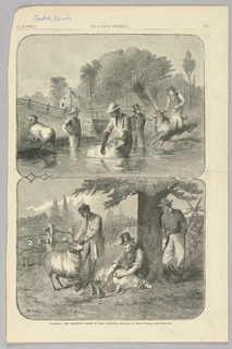 In the top illustration, figures wash sheep by dunking them in a river. On the bottom, figures shear sheep.