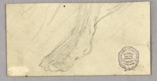 Sketch of a right foot, obliquely shown.