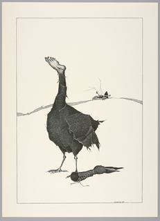 Plate 8, VI of the book, Très Admirable Bestiaire Fantastique (Very Admirable Fantastic Bestiary). Figure of a grotesque goose in surrealist style, its feathers composed of strips of fur and a human foot in the place of its head. At its feet lies a Victorian-style lace-up boot that ends in the form of a goose's head with open beak, echoing the foot form above. Landscape indicated by a curving shaded line in the background. A crab-like animal hybrid creeps over this horizon line and is partially in view. Composition contained within a black rectangular frame.