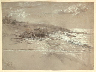 View of low rocky sea-coast with ocean at right, driftwood at center of shoreline, and scrub pines at crest of rising ground, upper left.