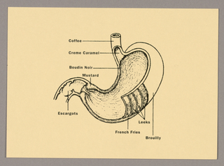 Recto: An illustration of a cutaway view of a human stomach is centered on a cream-colored card. Thin straight lines, extending horizontally or vertically from various parts of the stomach, end in eight food labels, imprinted in miniature black sans serif type: for example, creme caramel, escargots, and coffee.  Verso: Just below the top left edge, Restaurant Florent, capitalized, is followed underneath by the restaurant's address, hours and telephone number, imprinted on three lines. A thin vertical line, ending at the bottom in Design: M&Co, separates the message and addressee areas. On the upper right, a rectangular outline encloses the word Stamp.