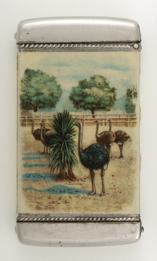 """Rectangular, with rounded corners, featuring printed advertisement for Cawston Ostrich Farm.  The front displays image of man in tan suit and black bowler hat sitting astride an ostrich, both facing left; below image is the inscription """"Cawston Ostrich Farm,"""" """"South Pasadena, California.""""  Reverse with image of six ostriches standing before or behind a shrub in an open field, with rail fence and trees in background.  Lid hinged at side. Striker in recessed groove on bottom."""