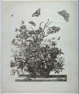 Print, Plate 10, from set of Flowers in a Basket