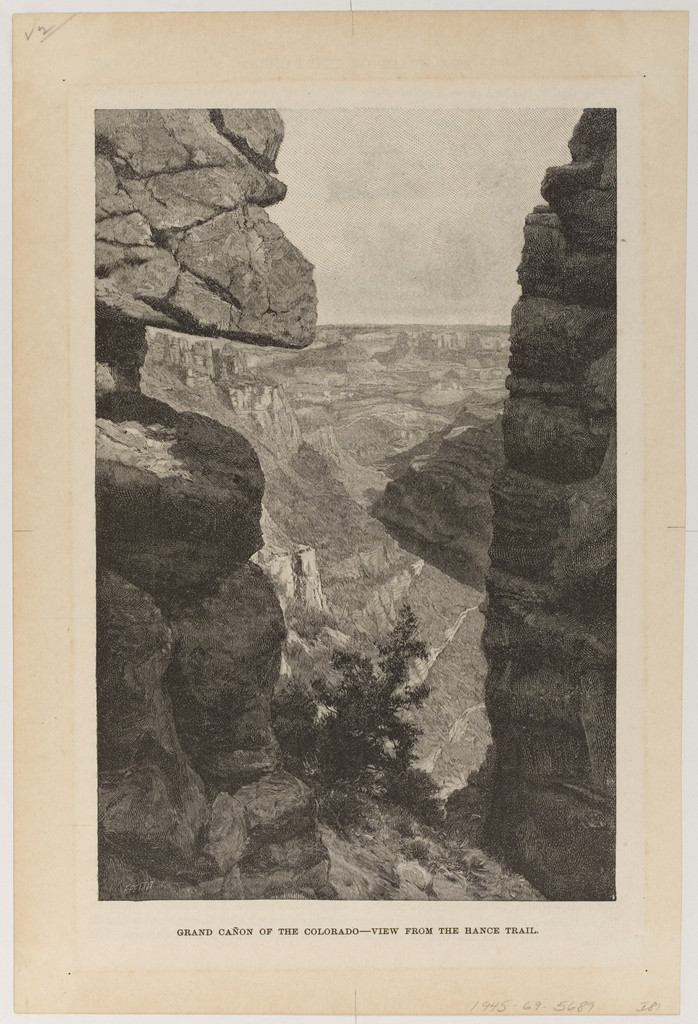 View of part of the canyon, high cliffs on each side, with tree at the bottom.