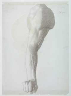 Vertical rectangle. Drawing of a male arm, hand clenched, from a cast (possibly the Borghese Warrior in the Louvre).