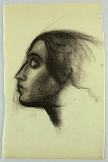 Occupying most of the page, this left profile view shows a woman's head with chin tilted upward; lips slightly parted; aquiline nose; eye closed under a heavy, curved eyebrow; and hair waved over the ear, which is partly visible through the strands. The charcoal is applied thickly, especially in the hair framing the face, the cheek, the chin under part, and the abbreviated neck.