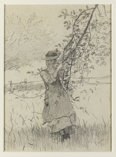 A view of a young woman dressed in a pinafore and hat at center, clinging to the branch of an apple tree. She looks to the left and her figure is in shadow. In the background a fence and a portion of a tree are visible.