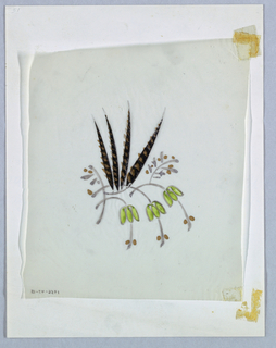 The design comprises four spiky leaves (or feathers) rising from an arrangement of three downward-curving stems, each bearing tripartite leaves and two berries, one on each side of the stem. Additional, less finished, stem-and-berry formations appear to the left and right of the spikes. The color scheme is comprised of black, dabbed with pinkish-brown (which appears to have faded from a brighter hue) for the spikes; green for the leaves; and the same pinkish-brown for the berries.
