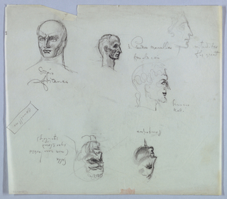 The six heads of Roman rulers, scattered on the page, are labeled in script. On the top left of the page, the head, almost bald and in frontal view, is turned slightly to the left; the eyes, looking in that direction, are wide open; the visible (left) brow is raised, while the brow area on the right is heavily shaded; the jaw, also shaded, is square. The label, Scipio/ Africanus, is underneath.  Next, to the right, just off center, is a head posed on a long neck, in right profile. Hair is indicated by a few wavy lines on the back of the head; the nose is aquiline, the face heavily shadowed, and the chin receding. The label, Claudius Marcellus, is on the right; from old coin, just underneath, alludes to a stylistic source.   On the far right, the lightly sketched head is in right profile; the aquiline nose, full lower lip, and cleft chin are the distinctive features. Mitridates/ the great is written on the right just next to the edge of the page.  In the space underneath the Claudius label is a head in right profile; the darker outline and shading of forehead, nose and mouth emphasize those features. The label, Perseus, is on the right. With the sheet turned top to bottom, the head on the left in right profile shows an upturned nose and rounded chin; dark outlines and heavy shading prevail. Pompeiius is the label underneath.   On the same level to the right, the head, turned toward the left, features deep horizontal creases in the forehead and heavy shading throughout. The right eyebrow curves vertically into the space between the eyes. A curly fringe indicates the hairline. Sulla, written on the right, is followed by the designer's parenthetical notation: more mean looking - eyes closed - squinting.