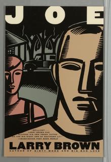 Book Cover, Joe
