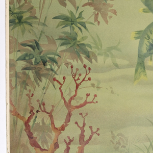 Scenic wallpaper designed for a bathroom. This mural is composed of three different panels making up one underwater scene. Section I, the first of three panels, contains two large fish with striped heads swimming. Two clams rest on the hilly bottom. Plant life is growing up both sides of the scene. The three panels work in sequence, with the right edge of Section III joining up the left edge of Section I, allowing multiple sets to be used to repeat around your bathroom. Printed in colors on an off-white ground.