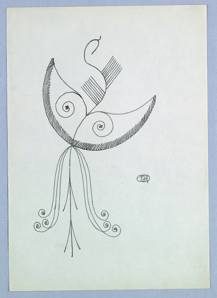 Drawing depicts a crescent-shaped tulip with curled vines.