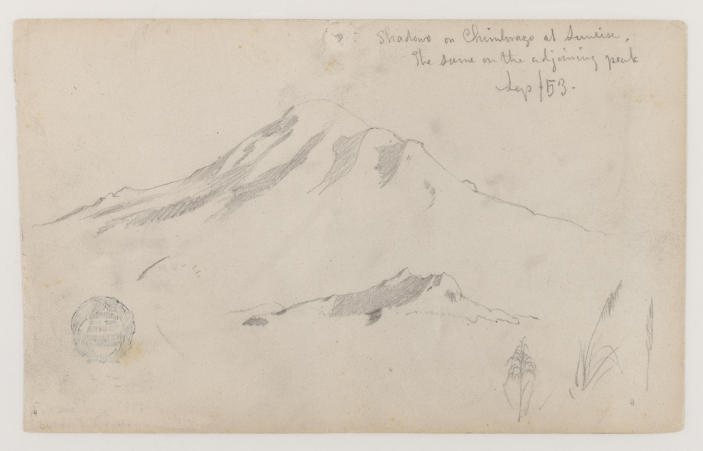 Horizontal view of Mt. Chimborazo and an adjoining peak, at top; and three details of grass, at bottom right.