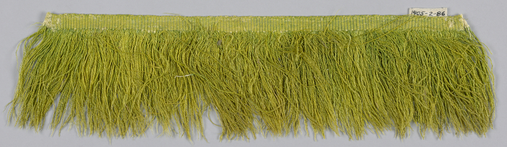 Yellow-green fringe with a plain-woven heading and a skirt of yellow-green silk thread.