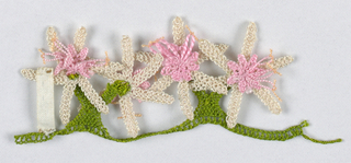 Trimming of flowers with six long white petals and pink centers.