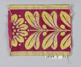 Paired leaves and flower in yellow and white on red.