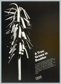Poster, IBM / A tree grows in Boulder