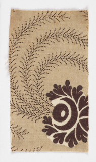 Brown flower and spray on beige background.