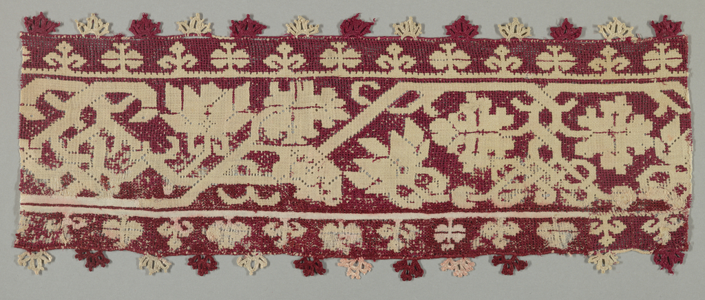Border with needlework fringe showing a design of a curving floral vine.