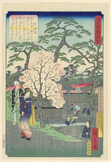 A woman who is accompanied by a man pauses to look back at a woman who appears to be calling her attention. In the background are people at the entrance of a shrine. The blooming cherry blossom highlights the base of the woman's kimono.