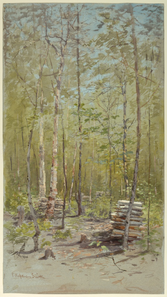 A forest scene with tall birch trees in the foreground extending beyond the limits of the composition, above.  Tree-stumps, piles of cut wood, lower right.