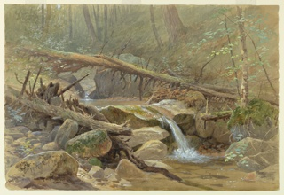 Drawing, Pool in the Woods