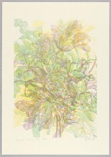 Print, Flower Still IV, 1989