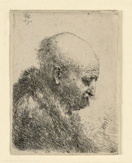 Head of an old man, facing right in profile.