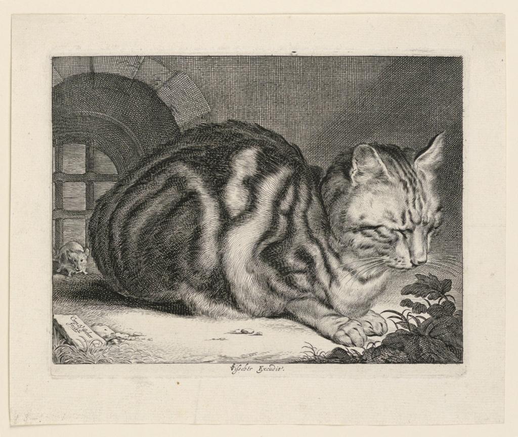 Print, The Large Cat