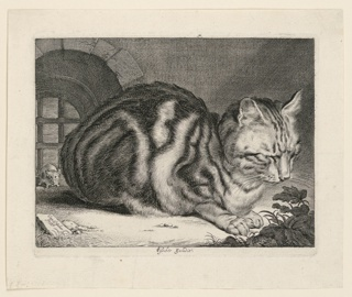 Print, The Big Cat, 1657