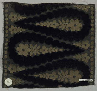 Sample of a wide ribbon with a design of pointed oval leaf shapes that face alternately left and right in black cut velvet. Inside each leaf are two rosettes and small leaves.