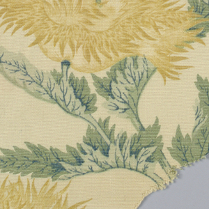 Ivory ribbed ground with large yellow chrysanthemums with gray-green foliage.