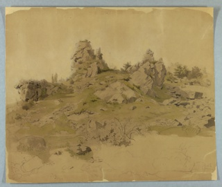 Sketch of rocks and foliage.