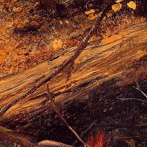 Horizontal view of a small mountain river in the foreground, with tree-trunks lying upon the steep bank as a fire burns in right center.