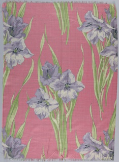 Pink ground with orchid amaryllis and green foliage.