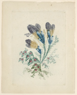 A spray of imaginative flowers. At lower left, spade-shaped leaves with red orbs at center, resembling berries. Above, to the right, three stems covered in smaller flora leading to larger bulbous and feather-like blossoms in blue, ochre, and purple.