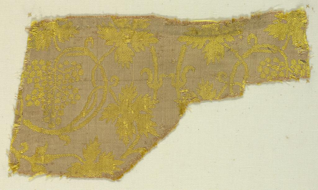 Yellow grape vine on tan ground.