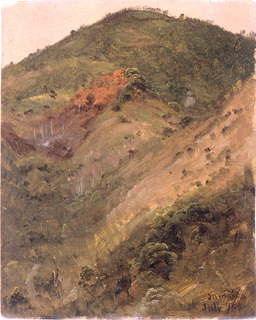 The slope of a wooded hill is seen. Place and date at bottom right.