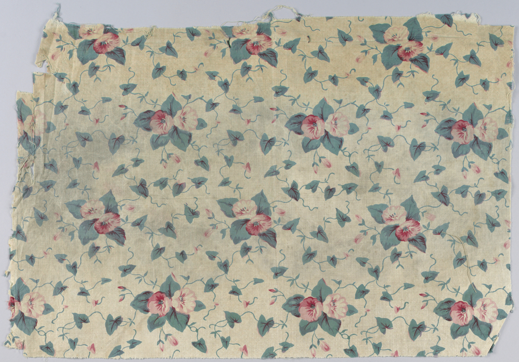 """Cotton, printed, probably by roller, in small all-over pattern of pink morning glories and leaves. The green is the chemical or """"direct"""" green. Glazed."""