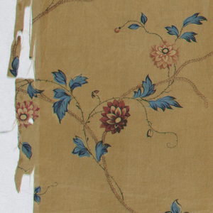 Delicate curving stem with red and blue flowers on brown background.