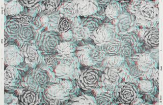 A dense design containing black and white images of the Aeonium cacti, with identical images printed slightly off-register in red and blue. This is an anaglyph or 3D printing.