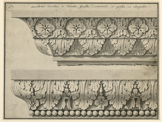Top depicts rosettes, calyxes, and leaves. Bottom shows leaves and plants with pevals below.