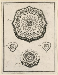 Four designs, the upper one similar to a large rosette, with radiating petal shapes, with frame alternately rounded and angled. Below, a small trefoil shape around a circle and small concentric hearts. Bottom, a sunburst becoming more geometrical. Numbered figs. 30, 31, 32, 33.
