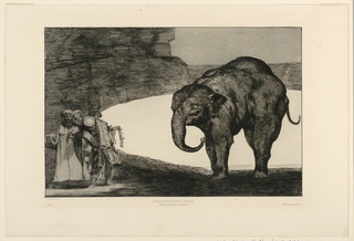 """A large elephant stands at right, facing left, partially outlined against an oval area of light. In the shadows, at the lower left, stands a group of four men, one holding up an open book, another a collar of bells. Printed by Francois Liénard, in the French magazine """"L'Art,"""" 1877, Vol. II, p. 40. Prepared in ca. 1815 for the Los Proverbios (Proverbs) series but not printed/published until later."""