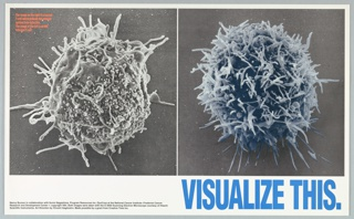 Poster for the Gay Men's Health Crisis that features a photograph of a normal T-cell alongside a photograph of an HIV-infected T-cell. Printed in large blue text, lower right, lower margin: VISUALIZE THIS.