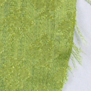 Small detached leaves in olive green.