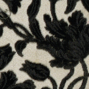 Fragment of black cut and uncut velvet on white ground. Functional weft of white cotton. Serpentine floral design.
