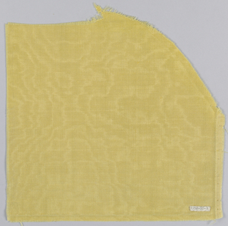 Bright golden yellow woolen cloth, moire and glazed on one side with medium scale watered effect.