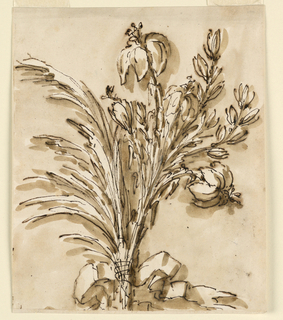 Drawing, Bunch of flowers tied with ribbon