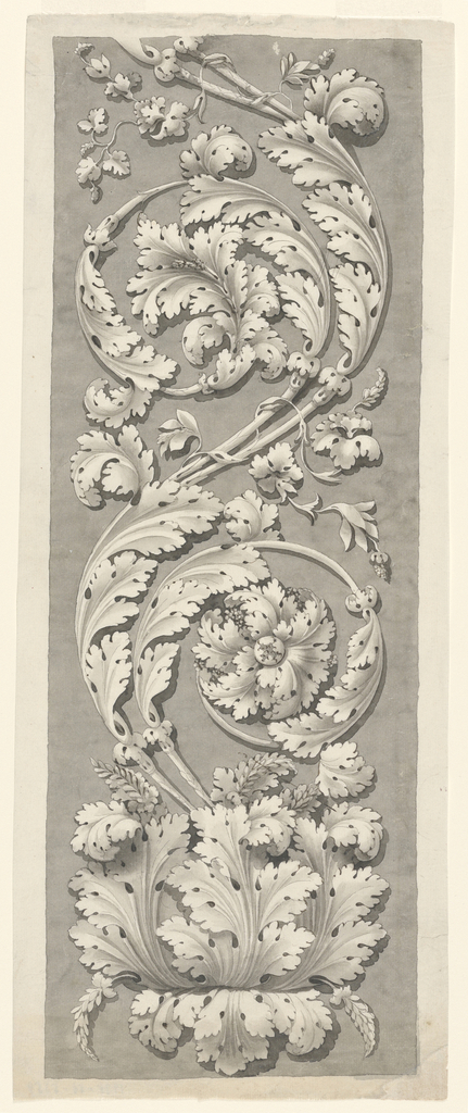 Drawing, Acanthus Ornament